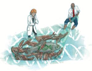 Illustratie (kleur) artsen vissen naar DNA